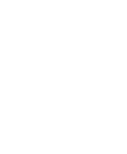 Connell-Group-Logo-icon white